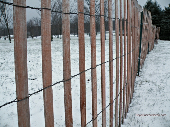 SnowFence.Filter.HS.Compressed.